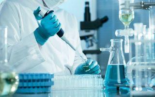 Когда формируется у человека активный искусственный иммунитет: причины и особенности процесса