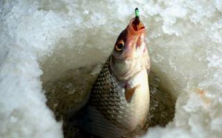 При каком давлении лучше клюет рыба при повышенном или пониженном