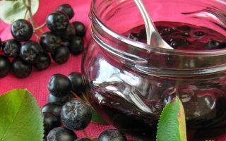 Черная рябина: от какого давления повышенного или пониженного давления, полезные свойства ягоды