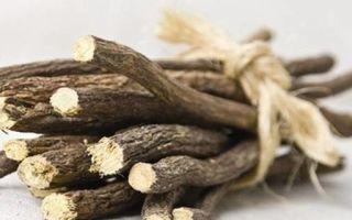 Травы от кашля и простуды: лучшие средства народной медицины