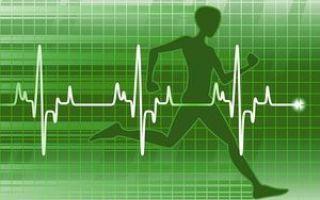 Осмотр сонной артерии на наличие пульса
