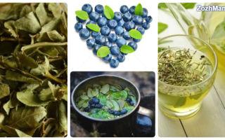 Чай из листьев черники польза и вред