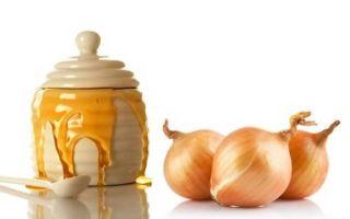 Лук вареный от кашля: проверенный временем народный рецепт и польза для организма