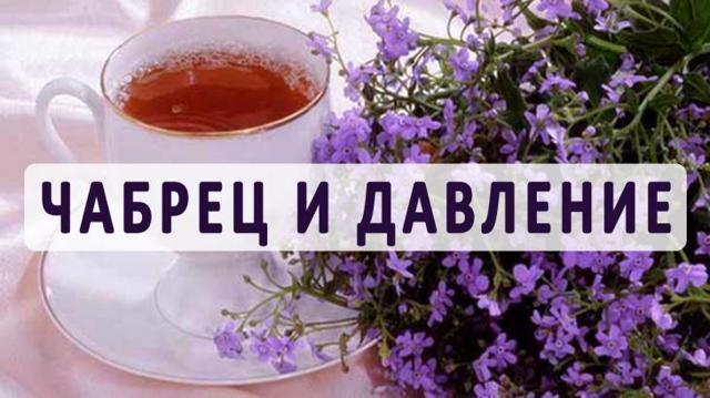 Можно ли при повышенном давлении пить чай с чабрецом?