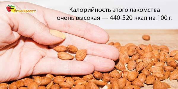 Косточки абрикоса польза и вред для мужчин