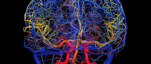 Чем снять спазм сосудов головного мозга при повышенном давлении