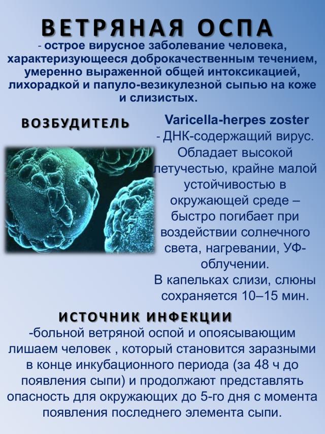 Вид иммунитета который возникает после перенесенной кори или ветрянки это