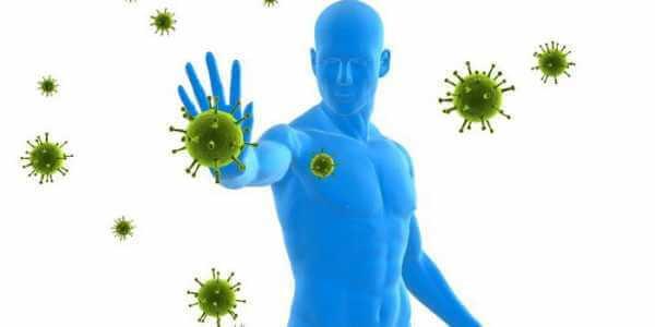 Виды иммунитета в зависимости от агента против которого он направлен