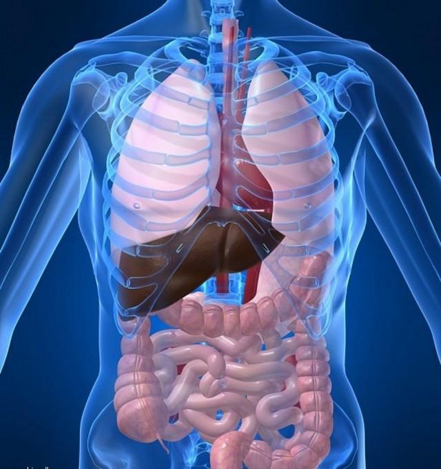 Рисунок на тему чтоб сказать болезни нет повышай иммунитет