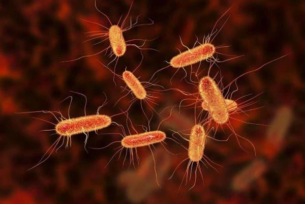 Как повысить иммунитет взрослому человеку в домашних условиях при ангине?