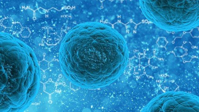 Активный искусственный иммунитет формируется у человека в том случае когда