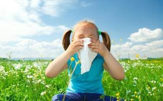 У ребенка сопли не проходят уже больше недели как достать шмыгает