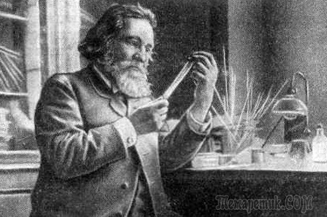 Кто открыл явление фагоцитоза которое лежит в основе клеточного иммунитета