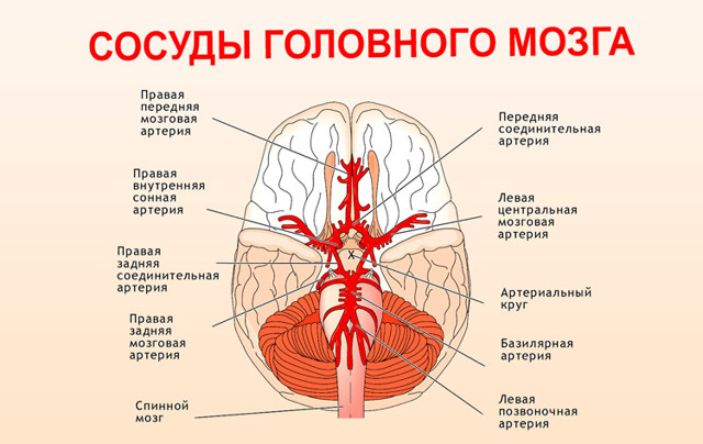 Что выпить от головы при повышенном давлении?