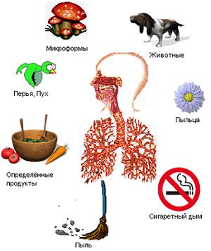 Как и чем лечить аллергический дерматит?