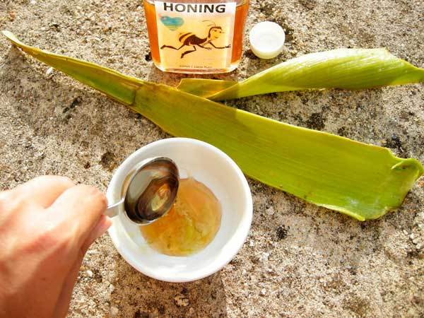 Алоэ мед масло от кашля