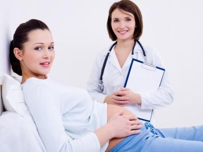 Внутренние органы малютки на 14 неделе беременности