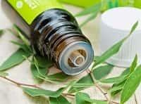 Мазь своими руками с эфирными маслами при контактном дерматите