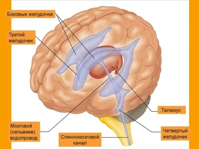 Лечение повышенное внутричерепное давление у грудничка симптомы и лечение