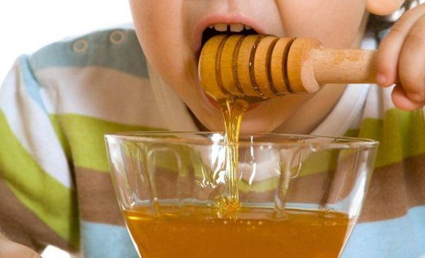 От кашля столетник с медом