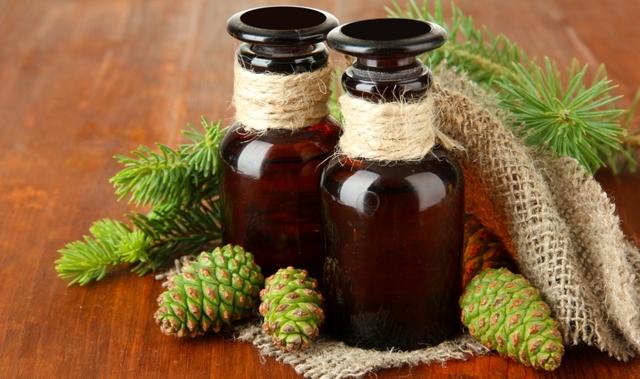 Настойка на зеленых шишках сосны применение и приготовление для иммунитета