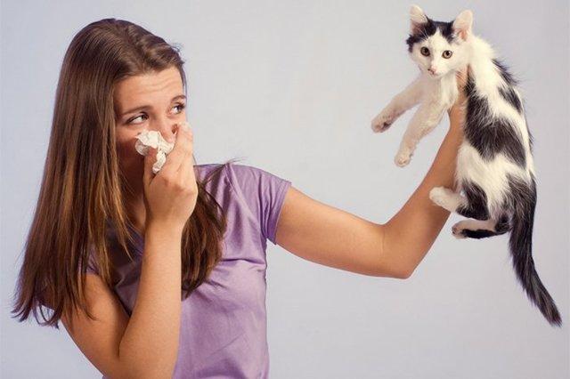 Как лечить контактный дерматит у кормящей мамы?
