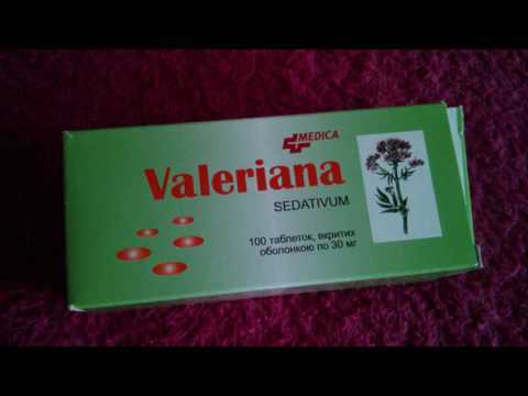 Что такое валерьянка, как она влияет на организм
