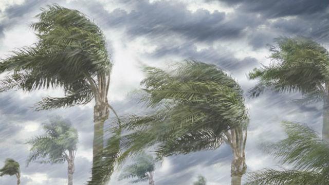 Ветер дует из областей повышенного давления в области пониженного