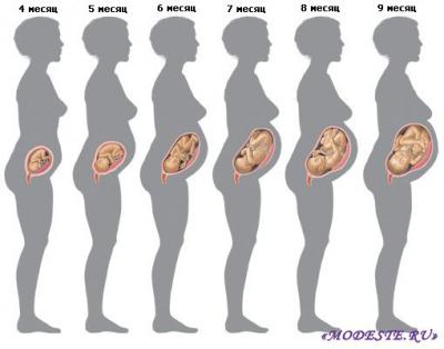 Особенности развития плода в этот период
