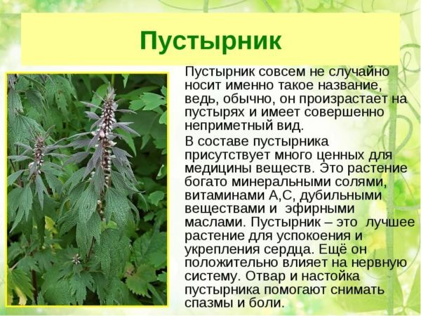 При повышенном давлении какие травы пить при