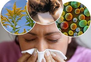 Аллергический дерматит у взрослого лечение в таразе