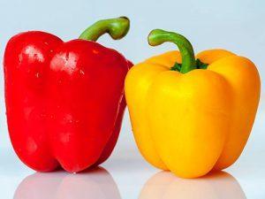 Болгарский перец польза и вред для организма человека
