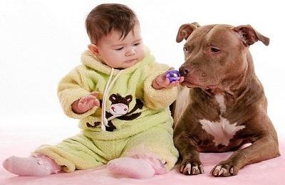 Себорейный дерматит на попе у ребенка