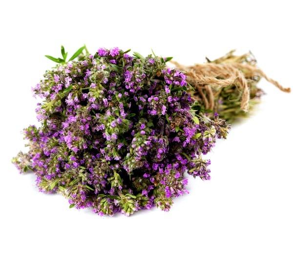 Какие травы пить от кашля?