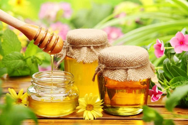 Лечение кашля алоэ и медом