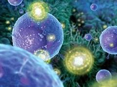 Как повысить иммунитет взрослому человеку в домашних условиях при вич?
