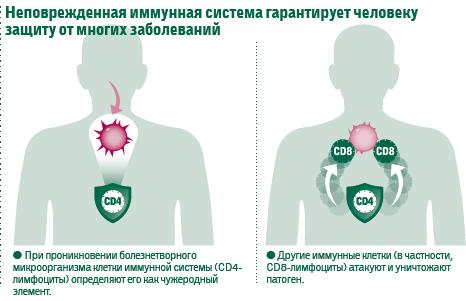 Как повысить иммунитет взрослому человеку в домашних условиях при впч?