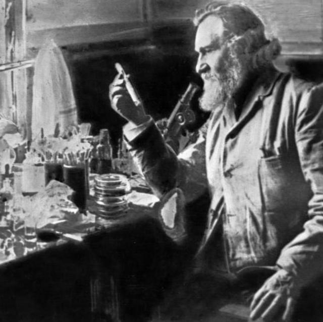 Какие методы были использованы мечниковым в его открытии явления иммунитета?